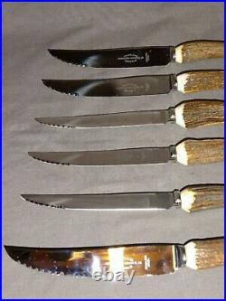 Vintage Stag Horn / Antler Handled Steak Knives Harrison Fisher